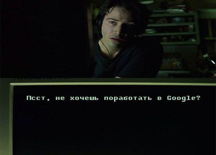 The Matrix has you